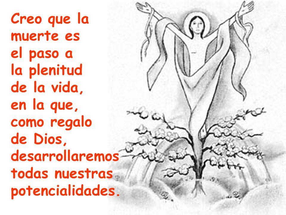 Creo que la muerte es el paso a la plenitud de la vida, en la que, como regalo de Dios, desarrollaremos todas nuestras potencialidades.