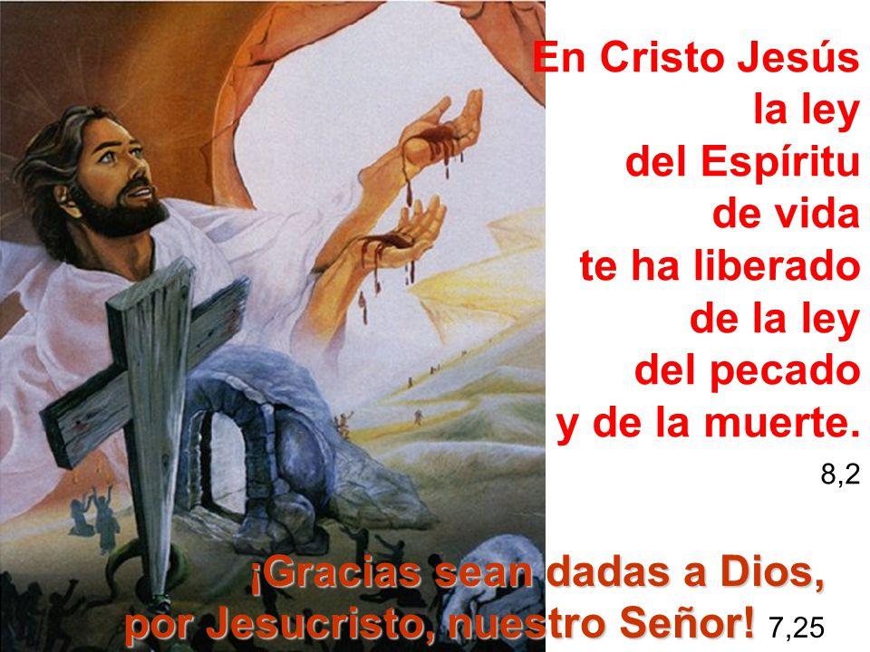 En Cristo Jesús la ley del Espíritu de vida te ha liberado de la ley del pecado y de la muerte. 8,2 ¡Gracias sean dadas a Dios, por Jesucristo, nuestr