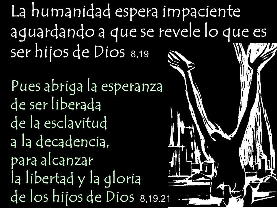 La humanidad espera impaciente aguardando a que se revele lo que es ser hijos de Dios 8,19 Pues abriga la esperanza de ser liberada de la esclavitud a