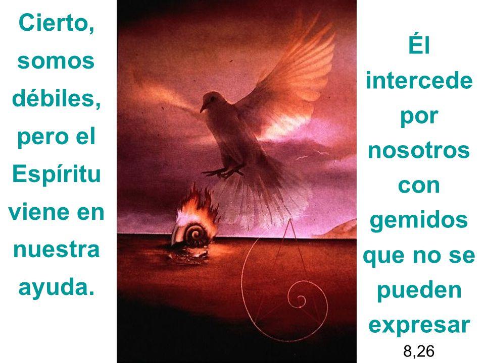 Cierto, somos débiles, pero el Espíritu viene en nuestra ayuda. Él intercede por nosotros con gemidos que no se pueden expresar 8,26