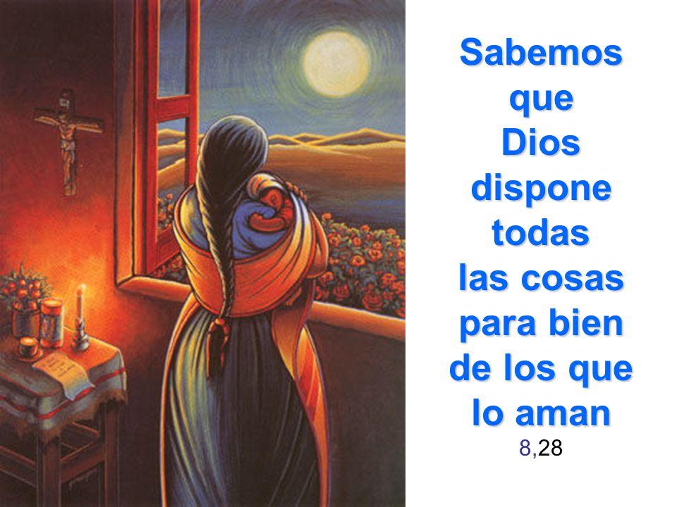 Sabemos que Dios dispone todas las cosas para bien de los que lo aman 8,28