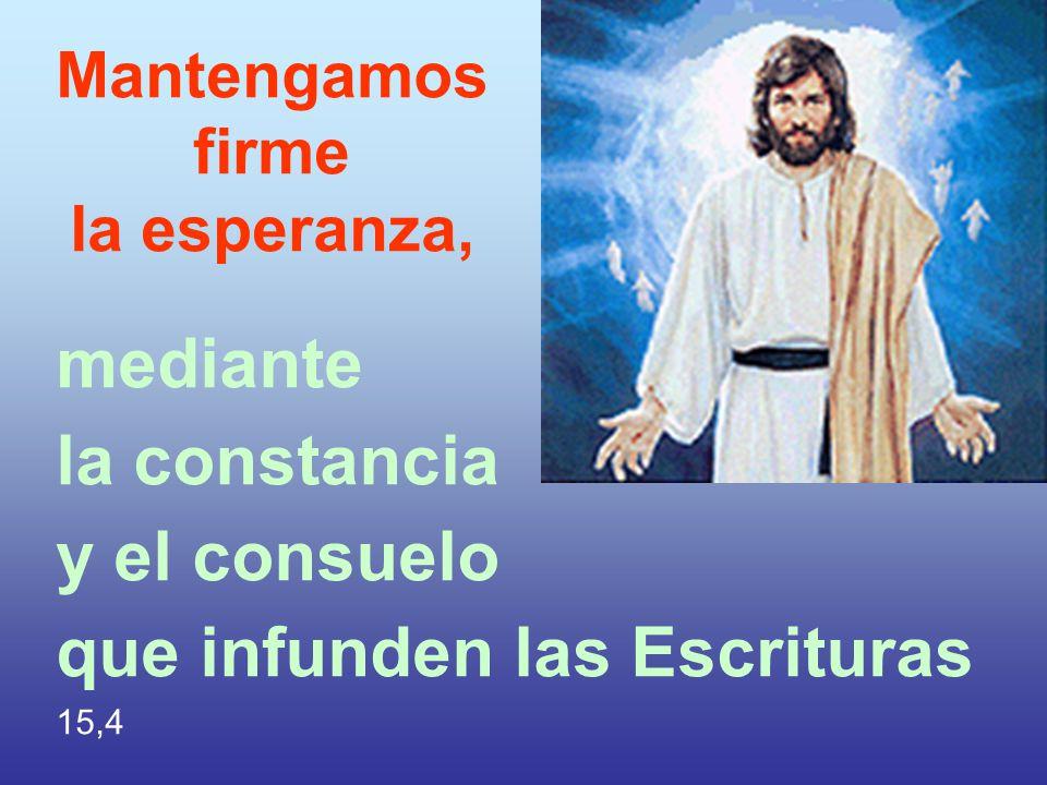 Mantengamos firme la esperanza, mediante la constancia y el consuelo que infunden las Escrituras 15,4