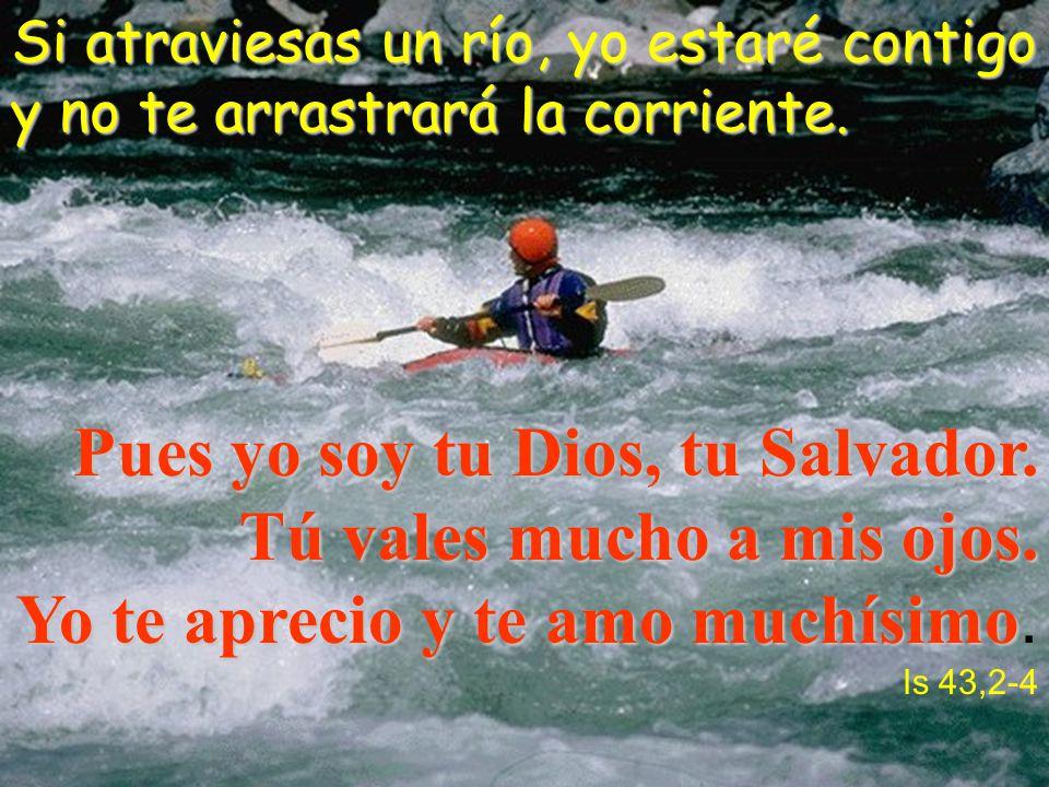 Si atraviesas un río, yo estaré contigo y no te arrastrará la corriente. Pues yo soy tu Dios, tu Salvador. Tú vales mucho a mis ojos. Yo te aprecio y