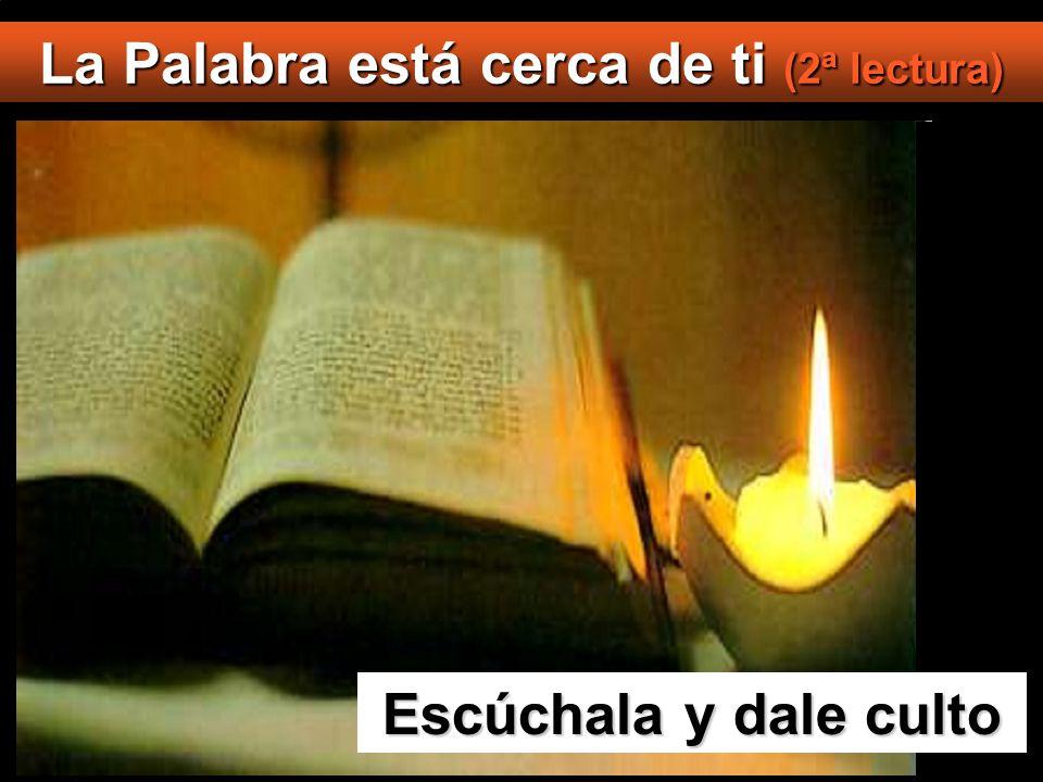 Jesús le contestó: Está escrito: Al Señor, tu Dios, adorarás y a él sólo darás culto .