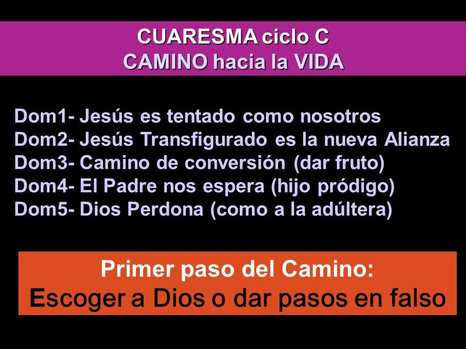 evangelio de Lucas EL CAMINO La tentación es La hora de las tinieblas de T.L.