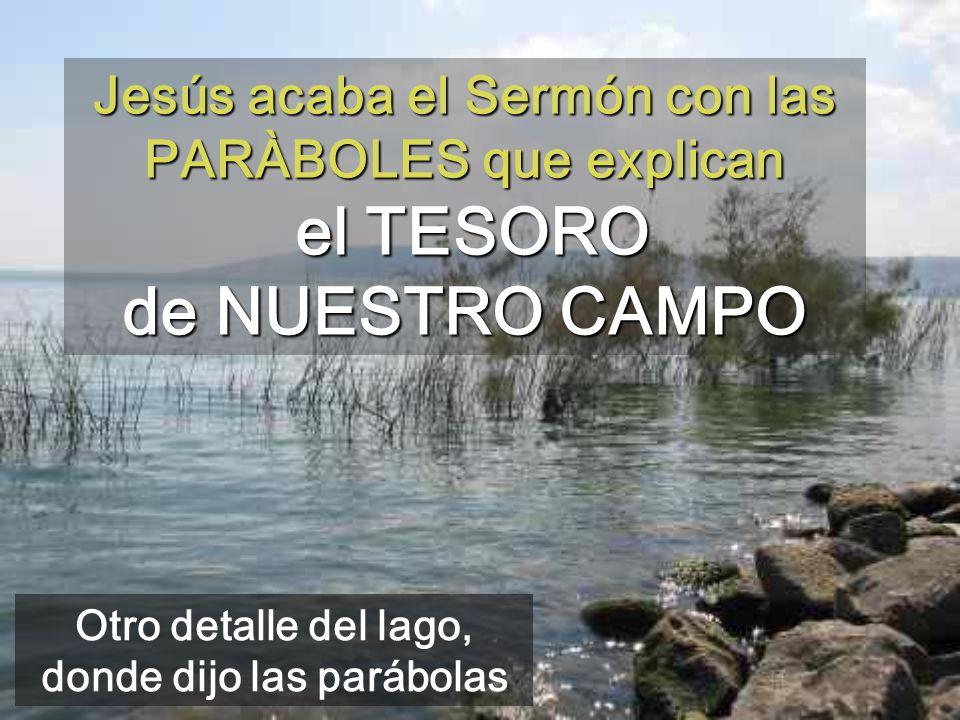 Jesús acaba el Sermón con las PARÀBOLES que explican el TESORO de NUESTRO CAMPO Otro detalle del lago, donde dijo las parábolas