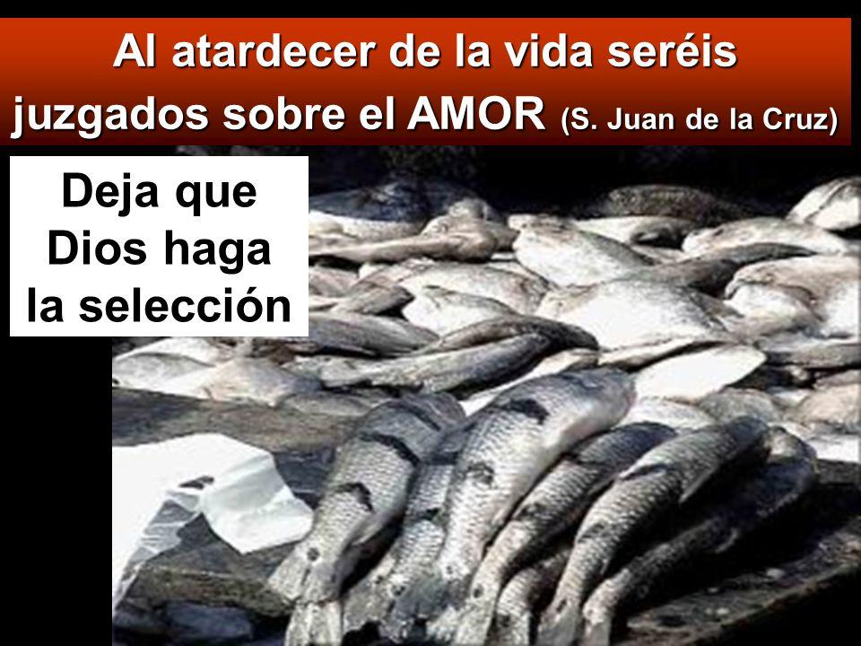 El reino de los cielos se parece también a la red que echan en el mar y recoge toda clase de peces: cuando está llena, la arrastran a la orilla, se sientan, y reúnen los buenos en cestos y los malos los tiran.