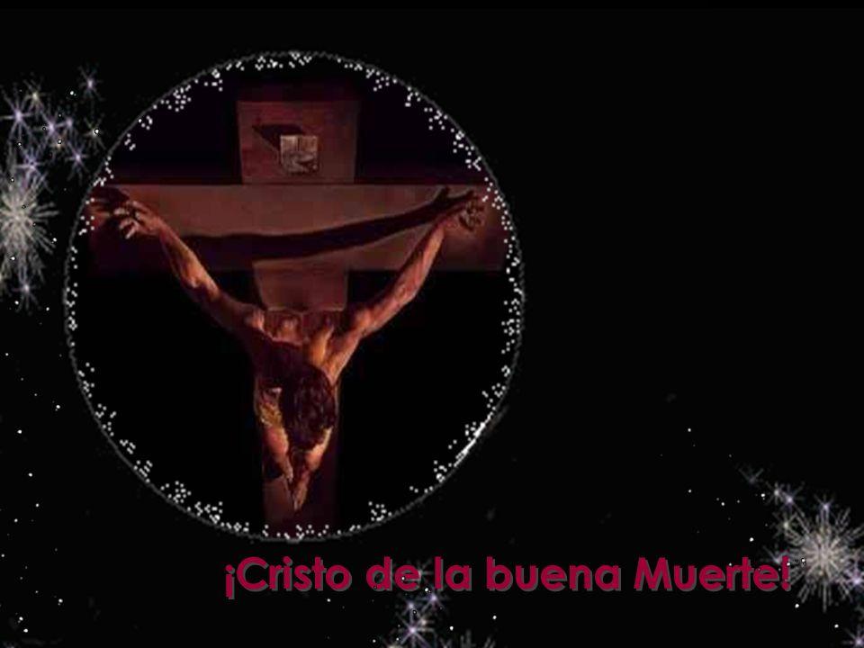 A ofrecerte, Señor, vengo mi ser, mi vida, mi amor, mi alegría, mi dolor; cuanto puedo y cuanto tengo, cuanto me has dado, Señor.