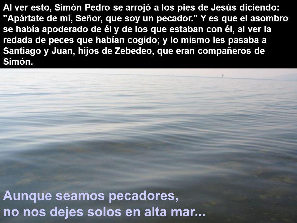 Al ver esto, Simón Pedro se arrojó a los pies de Jesús diciendo: Apártate de mí, Señor, que soy un pecador. Y es que el asombro se había apoderado de él y de los que estaban con él, al ver la redada de peces que habían cogido; y lo mismo les pasaba a Santiago y Juan, hijos de Zebedeo, que eran compañeros de Simón.