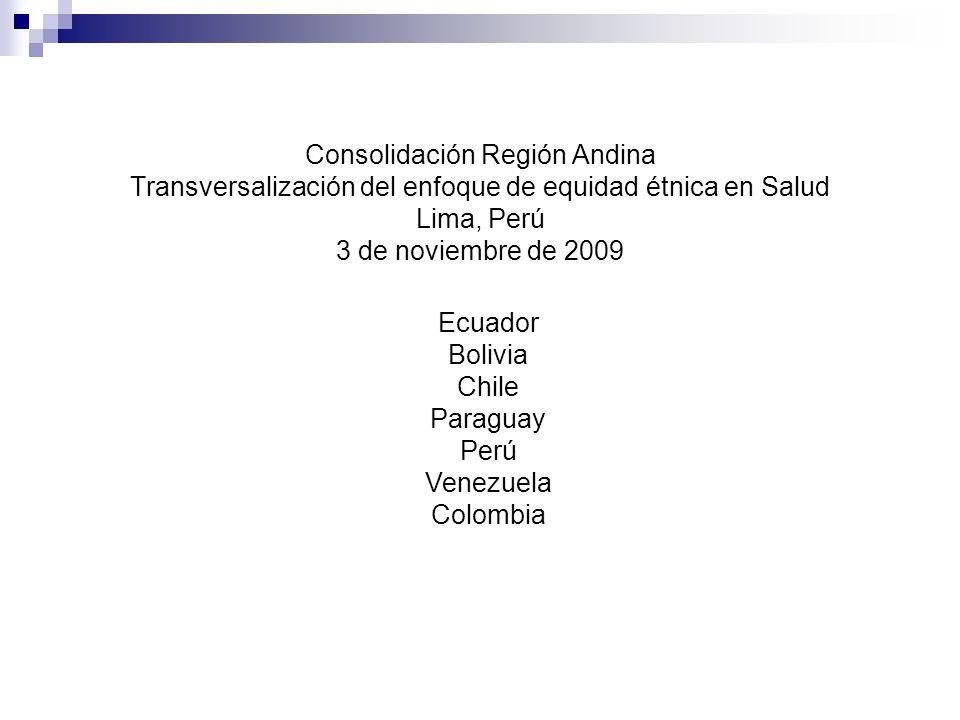 Consolidación Región Andina Transversalización del enfoque de equidad étnica en Salud Lima, Perú 3 de noviembre de 2009 Ecuador Bolivia Chile Paraguay