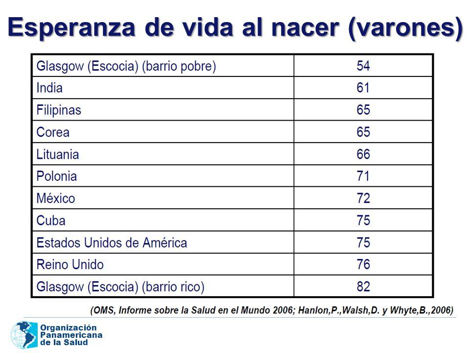 Organización Panamericana de la Salud Esperanza de vida al nacer (varones)