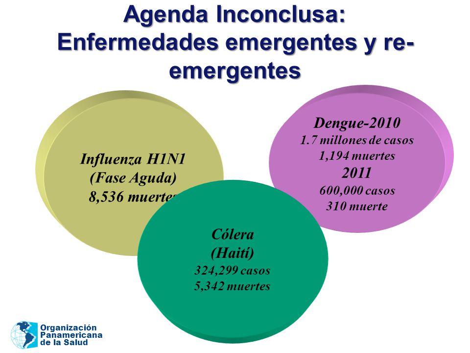Organización Panamericana de la Salud Dengue-2010 1.7 millones de casos 1,194 muertes 2011 600,000 casos 310 muerte Agenda Inconclusa: Enfermedades emergentes y re- emergentes Influenza H1N1 (Fase Aguda) 8,536 muertes Cólera (Haití) 324,299 casos 5,342 muertes