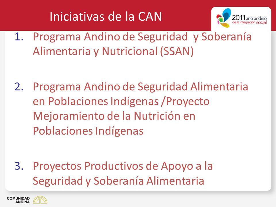 Iniciativas de la CAN 1.Programa Andino de Seguridad y Soberanía Alimentaria y Nutricional (SSAN) 2.Programa Andino de Seguridad Alimentaria en Poblac