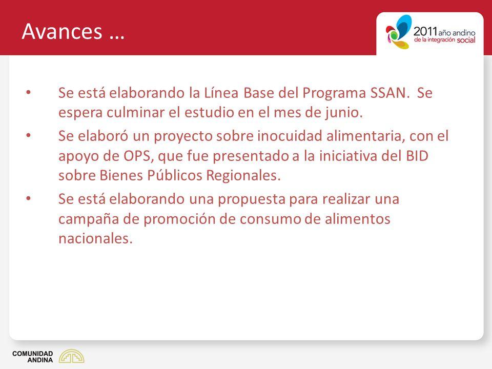 Avances … Se está elaborando la Línea Base del Programa SSAN. Se espera culminar el estudio en el mes de junio. Se elaboró un proyecto sobre inocuidad