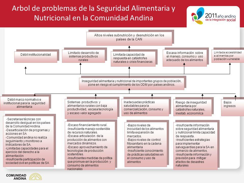 Arbol de problemas de la Seguridad Alimentaria y Nutricional en la Comunidad Andina Inadecuadas prácticas saludables para la comercialización, consumo
