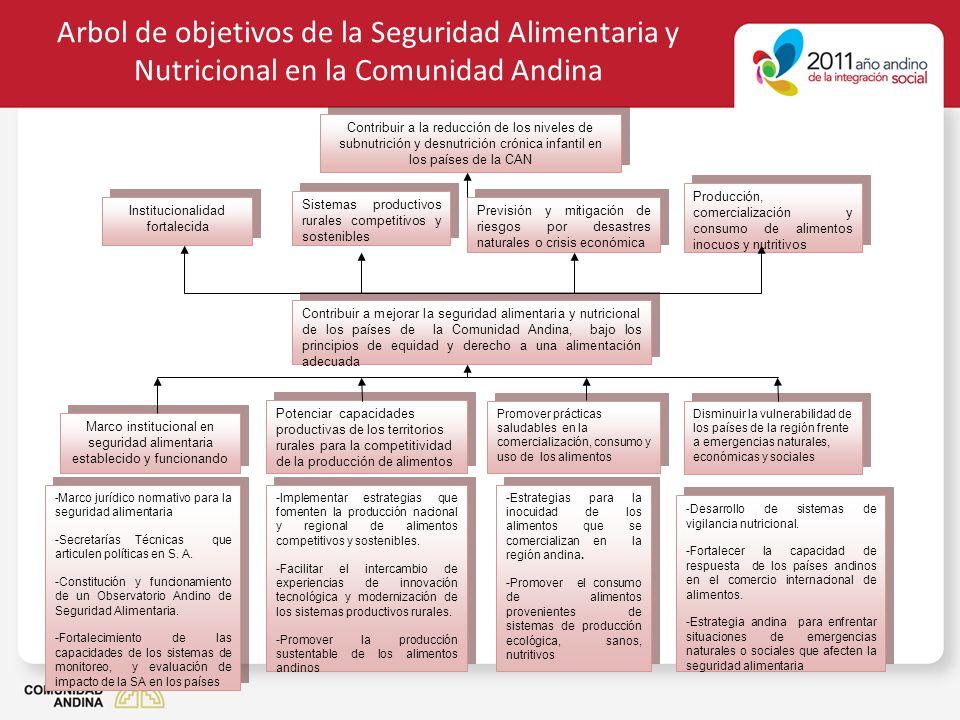 Arbol de objetivos de la Seguridad Alimentaria y Nutricional en la Comunidad Andina Promover prácticas saludables en la comercialización, consumo y us