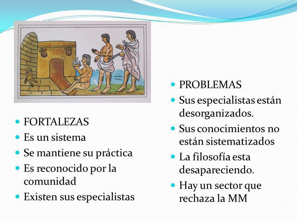 FORTALEZAS Es un sistema Se mantiene su práctica Es reconocido por la comunidad Existen sus especialistas PROBLEMAS Sus especialistas están desorganizados.