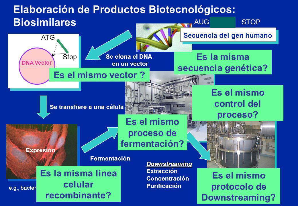 e.g., bacterial or mammalian cell Fermentación Se clona el DNA en un vector DNA Vector ATG Stop Downstreaming Extracción Concentración Purificación Es
