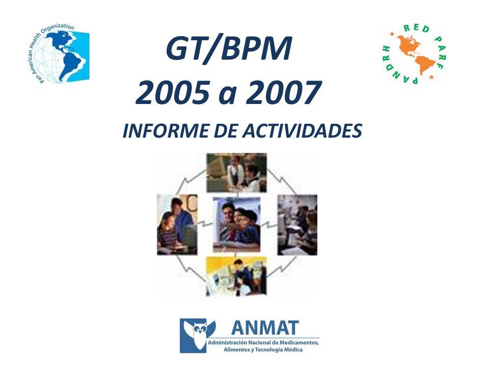 INFORME DE ACTIVIDADES GT/BPM 2005 a 2007