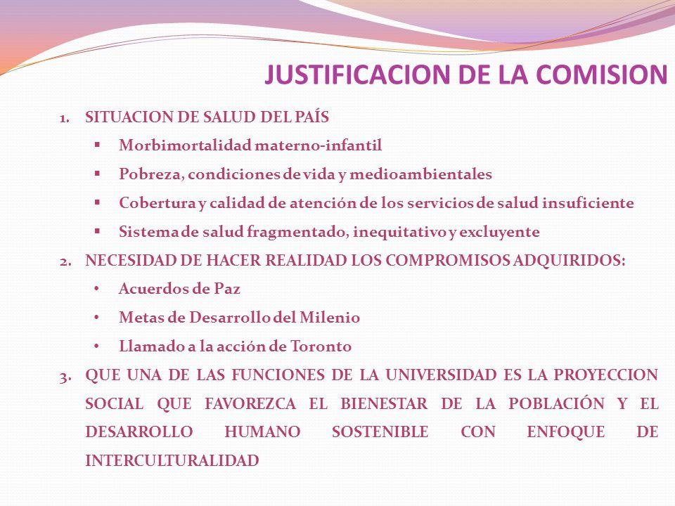 1.CONSOLIDAR LA INTEGRACION DE LA COMISION Y LAS SUBCOMISIONES MEDIANTE UNA PARTICIPACION MAS COMPROMETIDA DE LAS INSTITUCIONES.