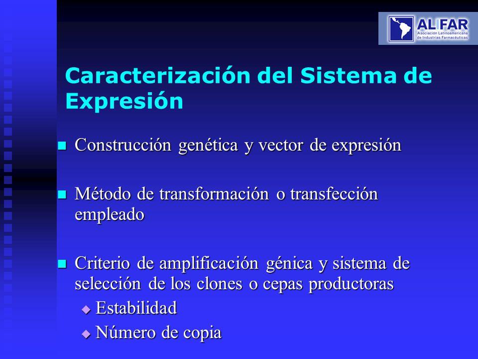 Caracterización del Sistema de Expresión Construcción genética y vector de expresión Construcción genética y vector de expresión Método de transformac