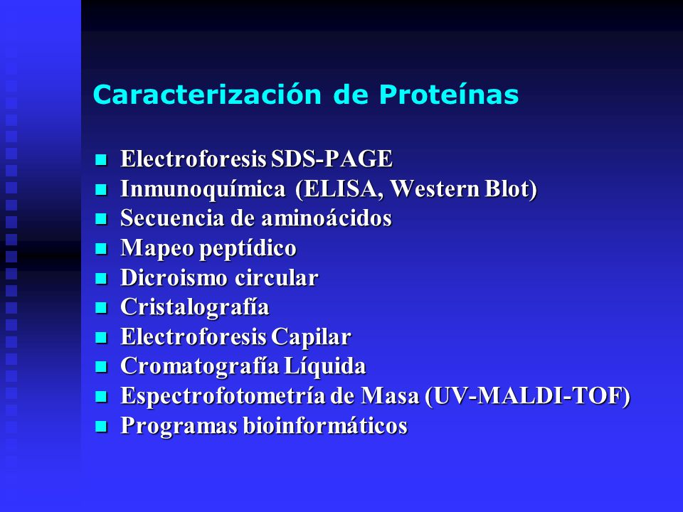 Caracterización de Proteínas Electroforesis SDS-PAGE Electroforesis SDS-PAGE Inmunoquímica (ELISA, Western Blot) Inmunoquímica (ELISA, Western Blot) S