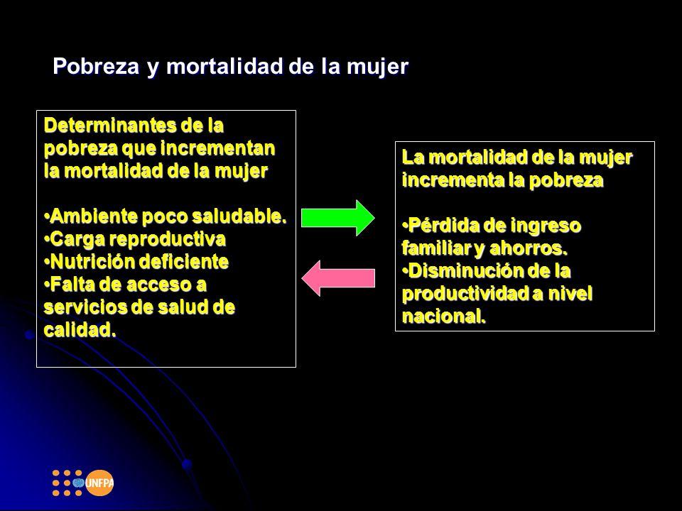 Pobreza y mortalidad de la mujer La mortalidad de la mujer incrementa la pobreza Pérdida de ingreso familiar y ahorros.Pérdida de ingreso familiar y ahorros.