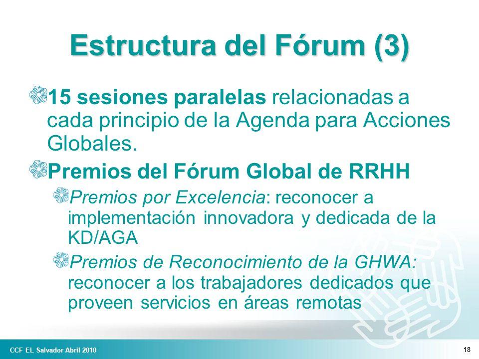 18 Estructura del Fórum (3) 15 sesiones paralelas relacionadas a cada principio de la Agenda para Acciones Globales.