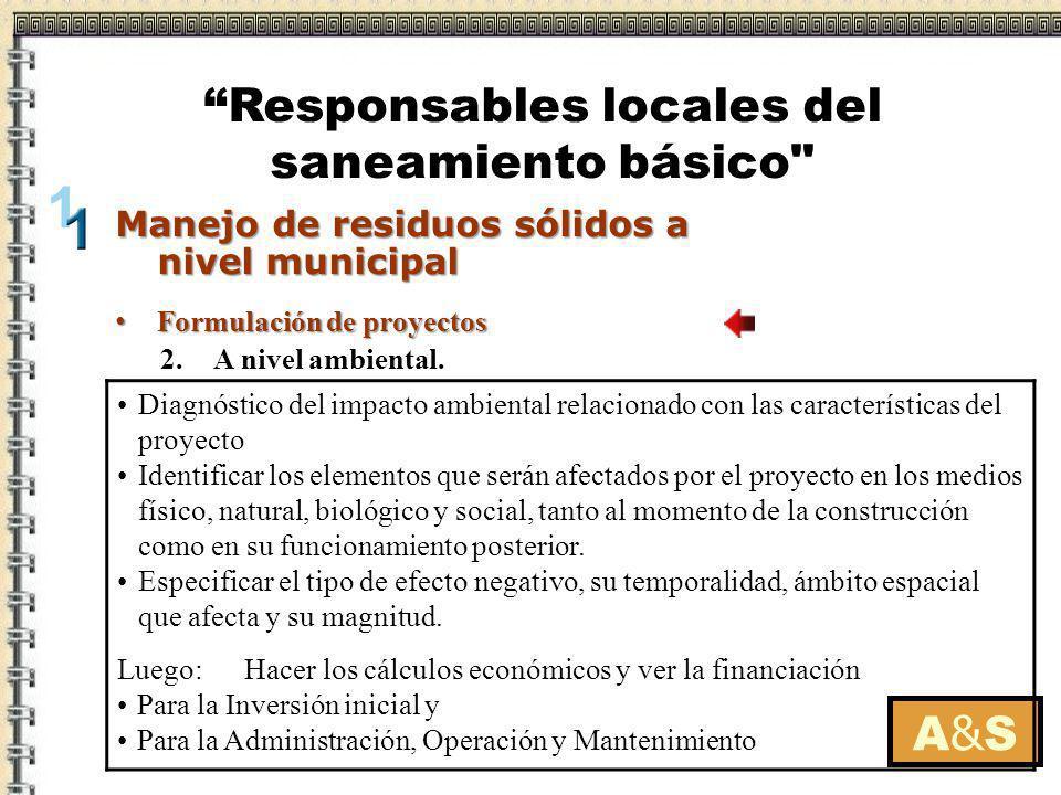 Formulación de proyectos Formulación de proyectos A&SA&S Manejo de residuos sólidos a nivel municipal Responsables locales del saneamiento básico 3.A nivel social.