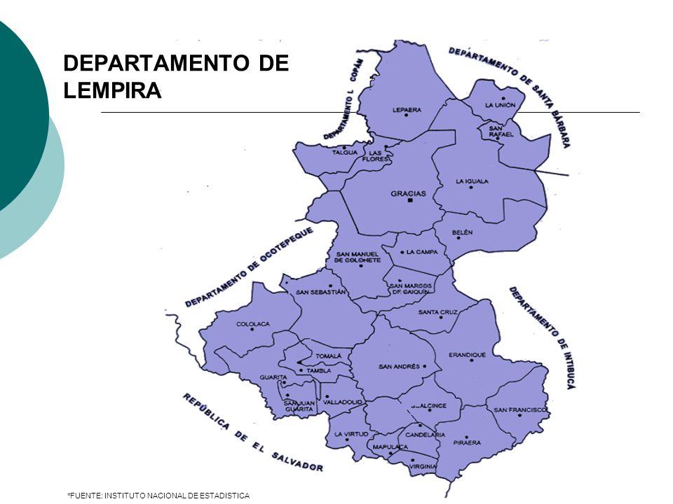 *FUENTE: INSTITUTO NACIONAL DE ESTADISTICA DEPARTAMENTO DE LEMPIRA
