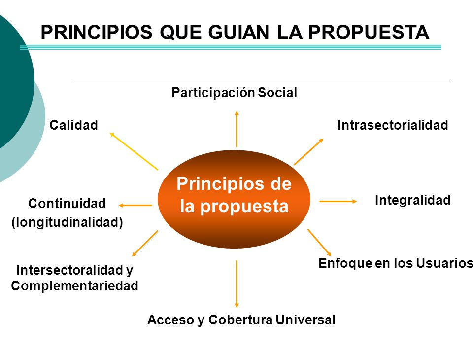 Calidad Continuidad (longitudinalidad) Enfoque en los Usuarios Integralidad Participación Social PRINCIPIOS QUE GUIAN LA PROPUESTA Acceso y Cobertura Universal Intersectoralidad y Complementariedad Intrasectorialidad Principios de la propuesta