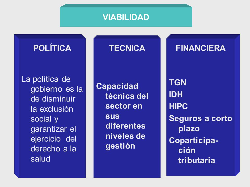 VIABILIDAD POLÍTICA La política de gobierno es la de disminuir la exclusión social y garantizar el ejercicio del derecho a la salud FINANCIERA TGN IDH HIPC Seguros a corto plazo Coparticipa- ción tributaria TECNICA Capacidad técnica del sector en sus diferentes niveles de gestión
