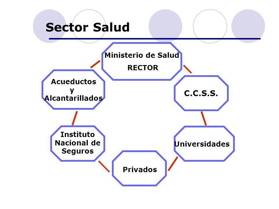 Sector Salud C.C.S.S. Acueductos y Alcantarillados Instituto Nacional de Seguros Privados Universidades Ministerio de Salud RECTOR