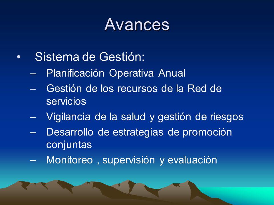 Avances Sistema de Gestión: –Planificación Operativa Anual –Gestión de los recursos de la Red de servicios –Vigilancia de la salud y gestión de riesgo