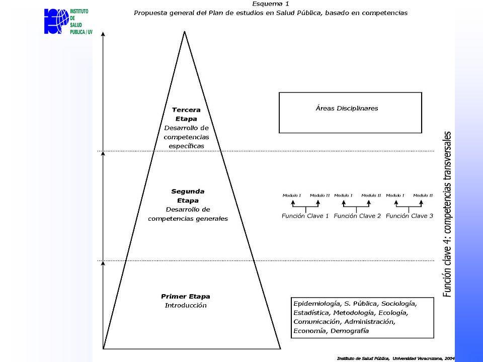Evaluación y seguimiento Evaluación al menos en dos momentos a lo largo del semestre, por el tutor, asesores de prácticas profesionales, respecto del desarrollo de competencias transversales Informe mensual del estudiante y tutor respecto del estado de la maestría.