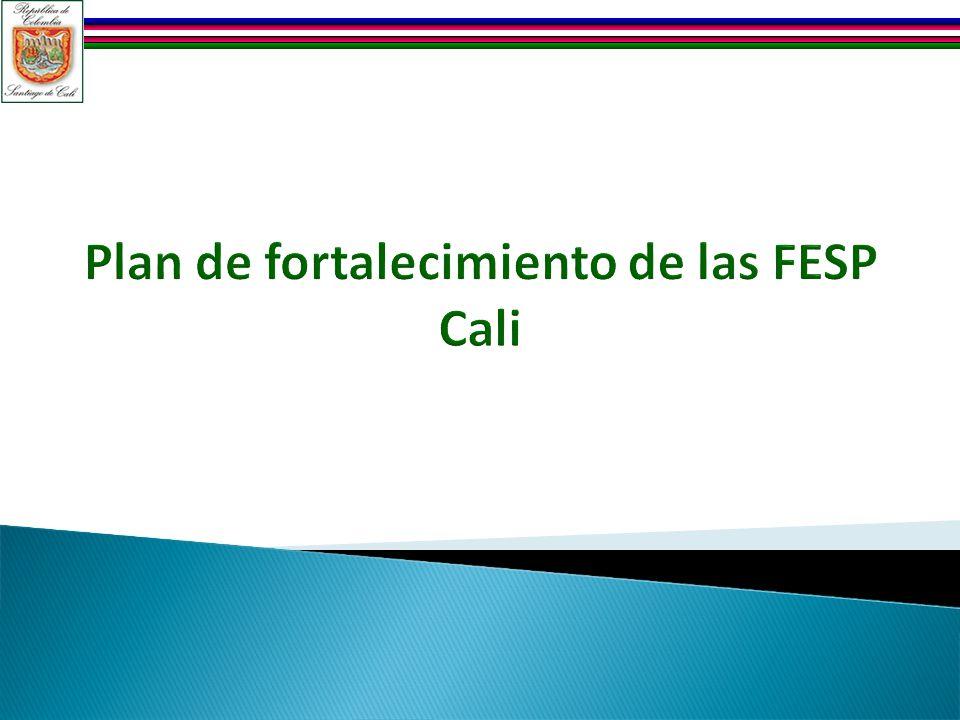 Plan de fortalecimiento de las FESP Cali