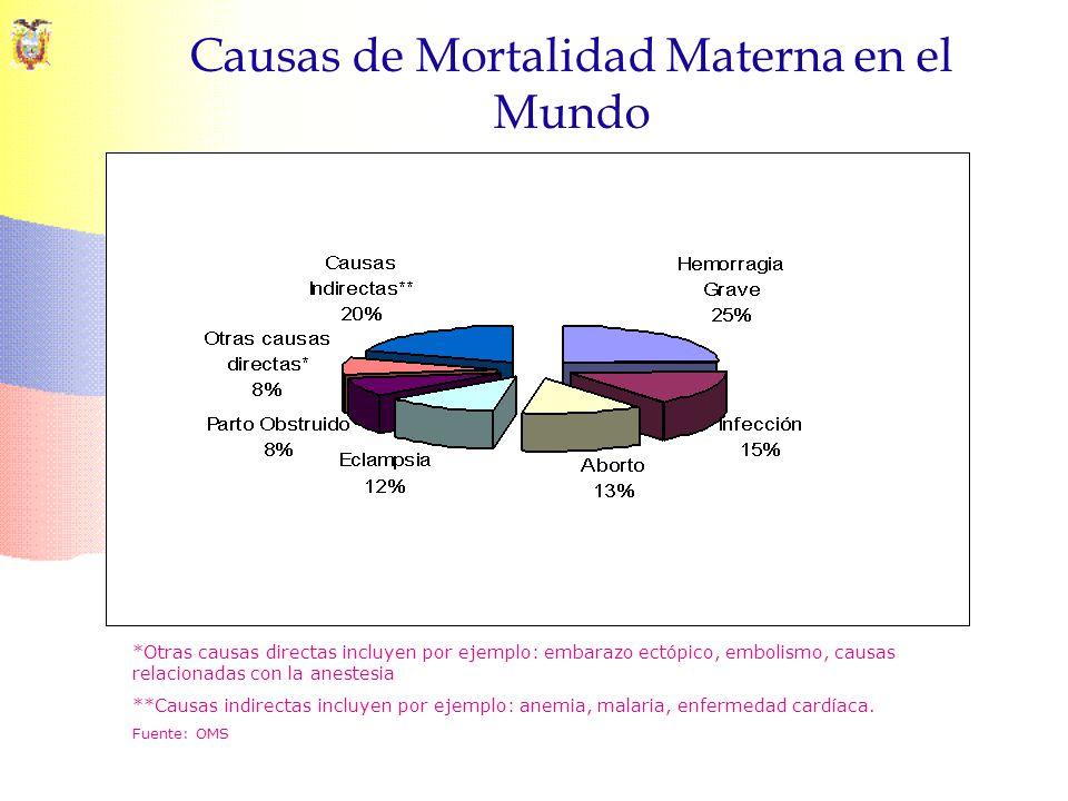 Causas de Mortalidad Materna en el Mundo *Otras causas directas incluyen por ejemplo: embarazo ectópico, embolismo, causas relacionadas con la anestes