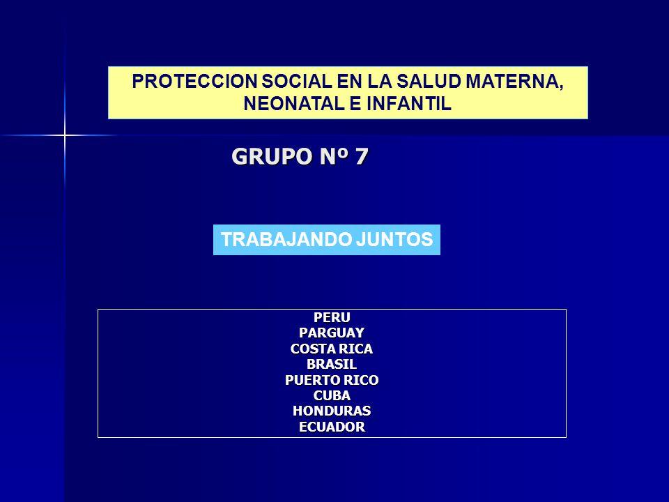 GRUPO Nº 7 PERUPARGUAY COSTA RICA BRASIL PUERTO RICO CUBAHONDURASECUADOR TRABAJANDO JUNTOS PROTECCION SOCIAL EN LA SALUD MATERNA, NEONATAL E INFANTIL