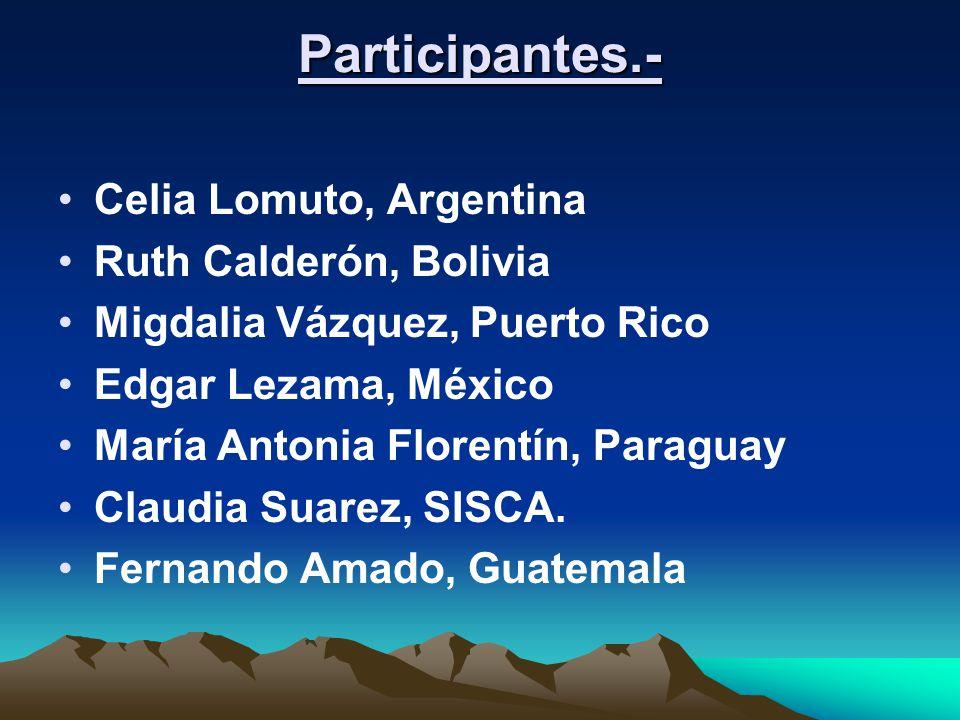 Participantes.- Celia Lomuto, Argentina Ruth Calderón, Bolivia Migdalia Vázquez, Puerto Rico Edgar Lezama, México María Antonia Florentín, Paraguay Claudia Suarez, SISCA.
