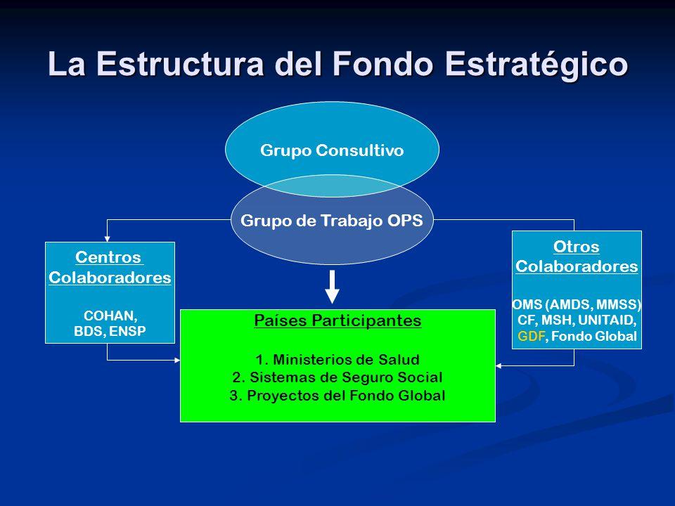 Gestión del Fondo Estratégico Gestión a nivel Regional / OPS Gestión a nivel Regional / OPS Selección de productos del Fondo Estratégico Selección de productos del Fondo Estratégico Precalificación Precalificación Planificación y gestión de suministros Planificación y gestión de suministros Compras Compras Financiamiento Financiamiento Informes financieros Informes financieros Convenios de participación Convenios de participación Coordinación del Fondo Estratégico Coordinación del Fondo Estratégico Se requiere la colaboración de los Estados Miembros participantes, y la OPS a nivel tanto regional como nacional Se requiere la colaboración de los Estados Miembros participantes, y la OPS a nivel tanto regional como nacional Gestión a nivel del País Gestión a nivel del País Oficina local de la OPS coordina con el MS-SS- la cooperación técnica requerida y el proceso de compra Oficina local de la OPS coordina con el MS-SS- la cooperación técnica requerida y el proceso de compra