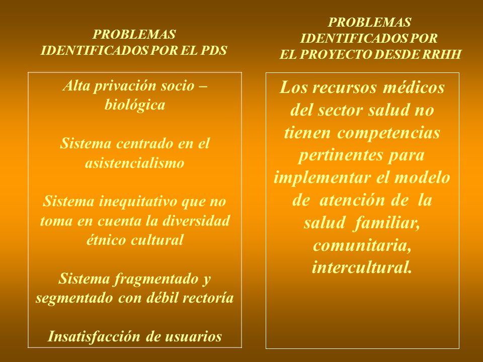 PROBLEMAS IDENTIFICADOS POR EL PDS PROBLEMAS IDENTIFICADOS POR EL PROYECTO DESDE RRHH Alta privación socio – biológica Sistema centrado en el asistenc