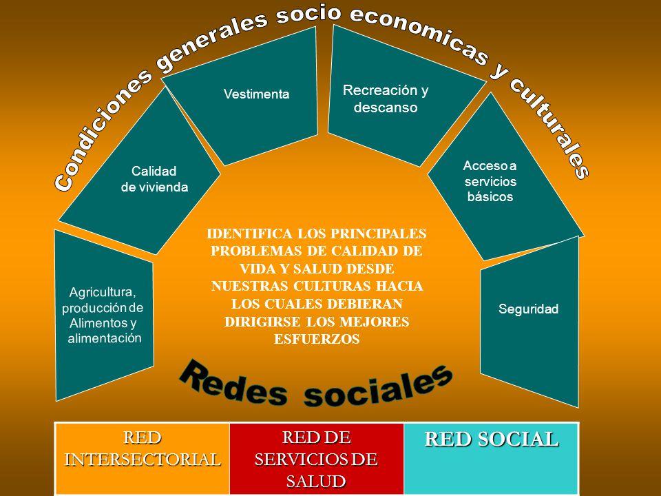 Agricultura, producción de Alimentos y alimentación Calidad de vivienda Vestimenta Seguridad Recreación y descanso Acceso a servicios básicos IDENTIFI