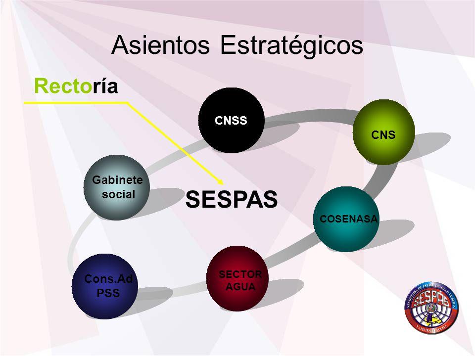 Asientos Estratégicos Gabinete social CNSS CNS COSENASA Cons.Ad PSS Rectoría SESPAS SECTOR AGUA
