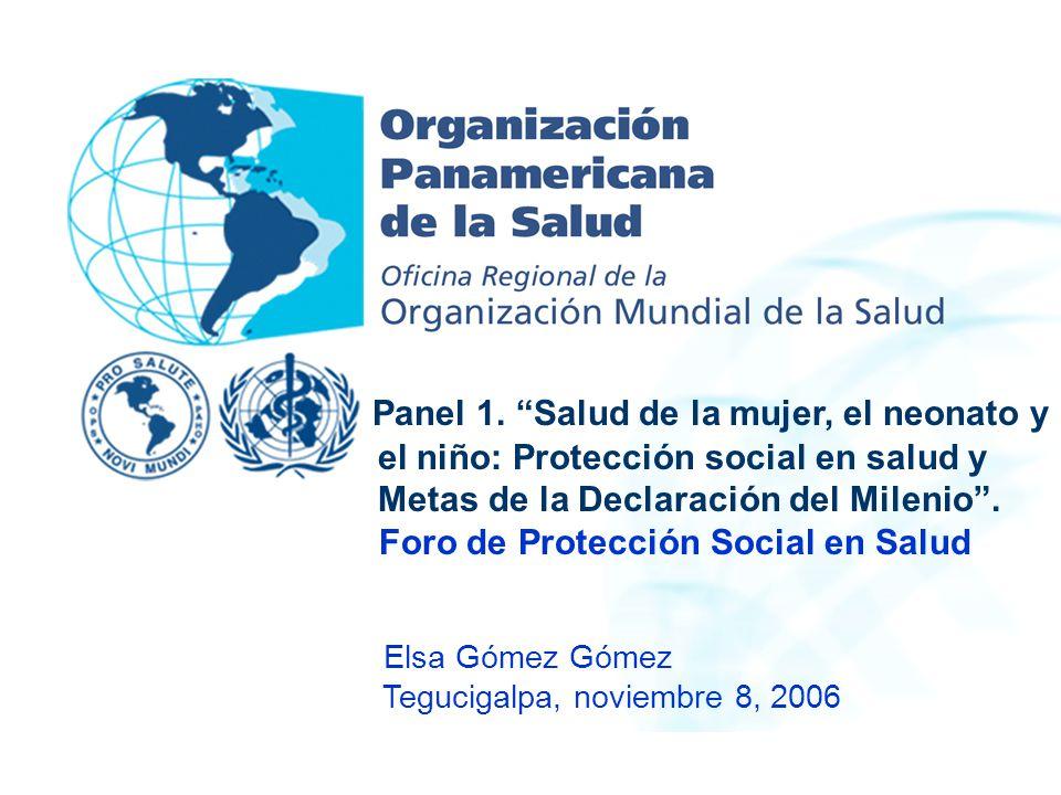 Panel 1. Salud de la mujer, el neonato y el niño: Protección social en salud y Metas de la Declaración del Milenio. Foro de Protección Social en Salud
