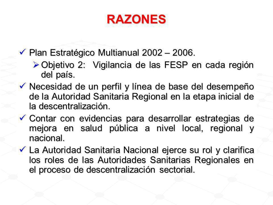 RAZONES Plan Estratégico Multianual 2002 – 2006.Plan Estratégico Multianual 2002 – 2006.