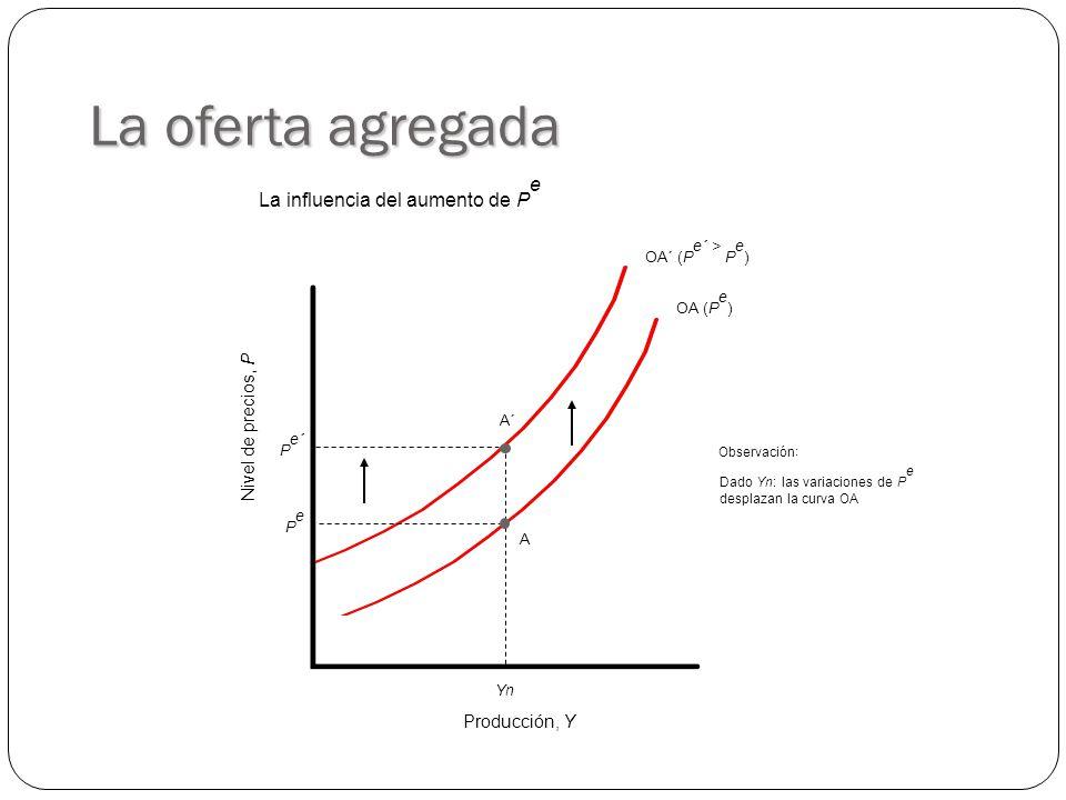 OA´ (P e´ > P e ) OA (P e ) Producción, Y Nivel de precios, P YnYn PePe A La oferta agregada P e´ A´ Observación : Dado Yn: las variaciones de P e desplazan la curva OA La influencia del aumento de P e