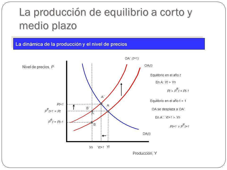 OA(t) Producción, Y Nivel de precios, P DA(t) YtYt P e t+1 = Pt A YnYn Equilibrio en el año t En A: Yt > Yn Pt > P e t = Pt-1 P e t = Pt-1 B OA´ (t+1) La producción de equilibrio a corto y medio plazo Equilibrio en el año t + 1 En A´: Yt+1 > Yn A´ Pt+1 Yt+1 Pt+1 > P e t+1 La dinámica de la producción y el nivel de precios B´ OA se desplaza a OA´