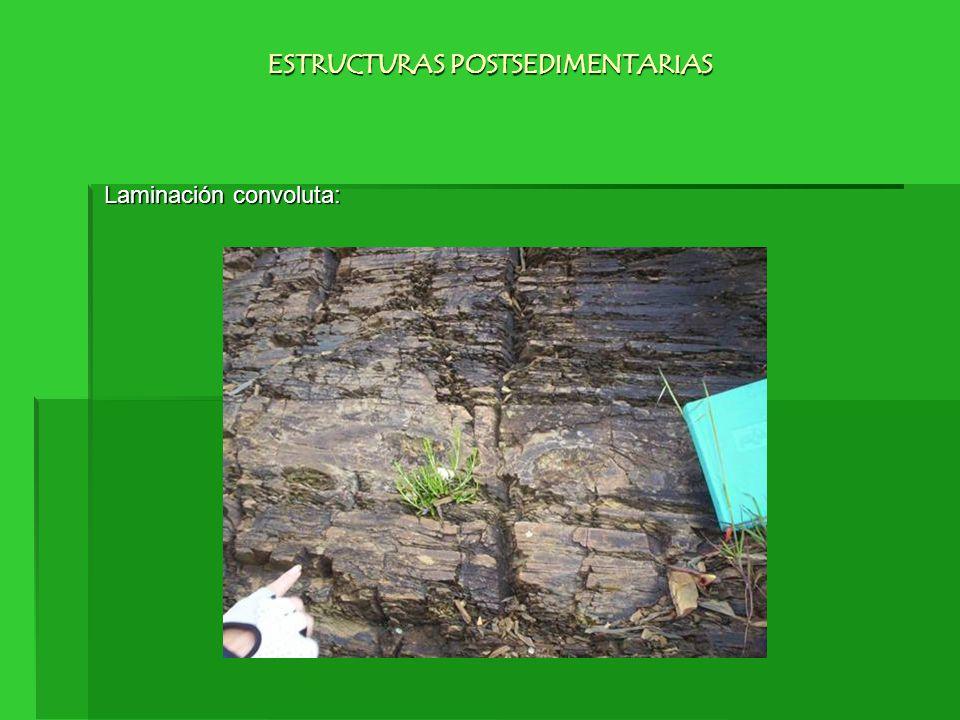 Laminación convoluta: ESTRUCTURAS POSTSEDIMENTARIAS