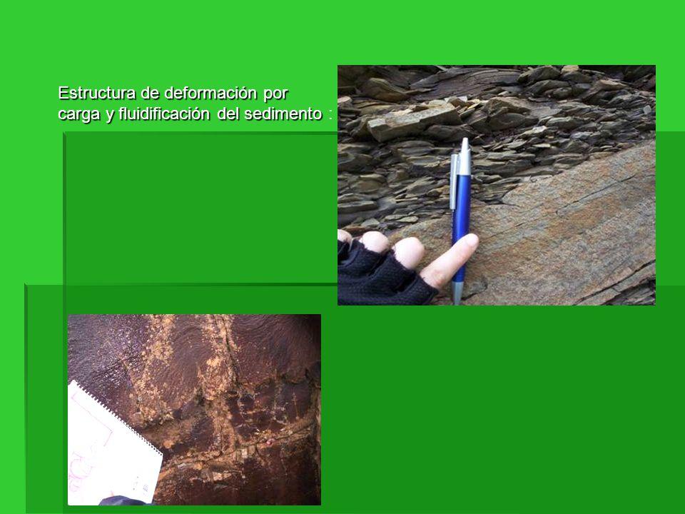 Estructura de deformación por carga y fluidificación del sedimento Estructura de deformación por carga y fluidificación del sedimento :