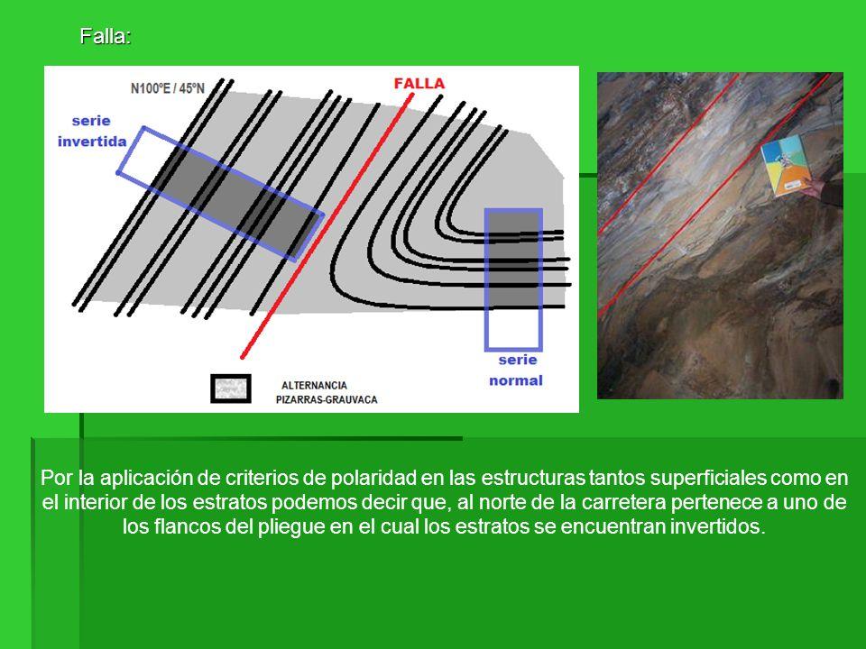 Falla: Falla: Por la aplicación de criterios de polaridad en las estructuras tantos superficiales como en el interior de los estratos podemos decir qu
